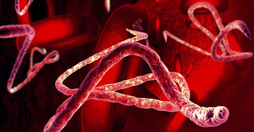 Disruptive Technologies Push Bioterrorism To A Whole New Level